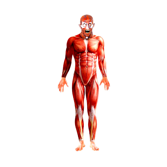 Smiffy's Anatomy Man Costume