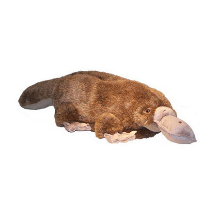 Platypus Animal Feet Slippers