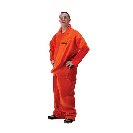 Prisoner Department Of Erections Party Costume